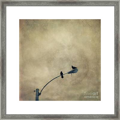 A Short Moment Framed Print by Priska Wettstein