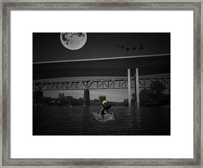 A Single Dream Framed Print by Shelley Smith