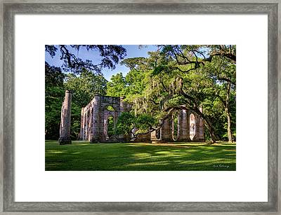 A Special Place Old Sheldon Church Ruins Framed Print by Reid Callaway