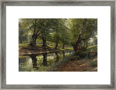 A Stream Through The Glen Deer In The Distance Framed Print by MotionAge Designs