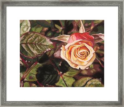 A Summer Day Framed Print by Melissa Tobia