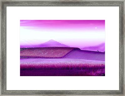 A Sweet Harvest Framed Print by Holly Kempe