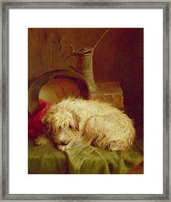 A Terrier Framed Print by John Fitz Marshall