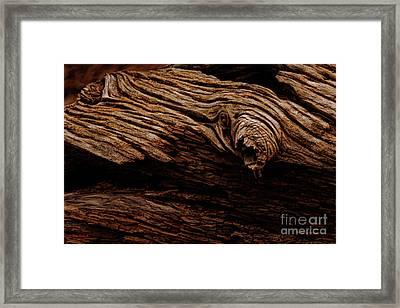 A Textured End Framed Print by Blake Richards