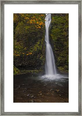 A Touch Of Autumn Framed Print by Loree Johnson