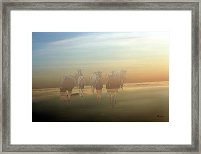 A Touch Of Horse Heaven Framed Print by Andrea Lawrence