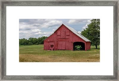 A Tree Grows Framed Print by Capt Gerry Hare
