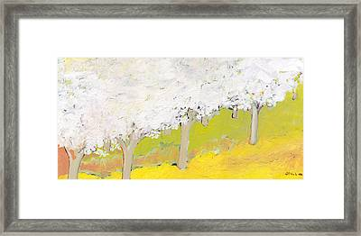 A Valley In Bloom Framed Print by Jennifer Lommers