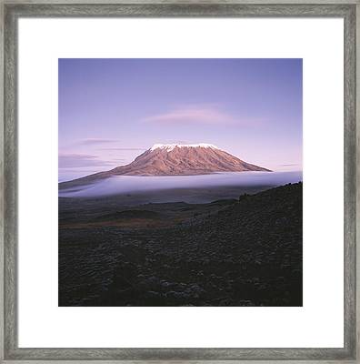 A View Of Snow-capped Mount Kilimanjaro Framed Print by David Pluth
