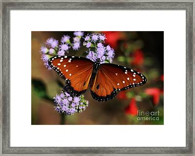 A Visit From The Queen Framed Print by Sabrina L Ryan