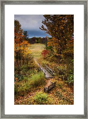 A Walk In The Park I Framed Print by Tom Mc Nemar