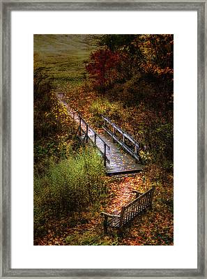 A Walk In The Park II Framed Print by Tom Mc Nemar