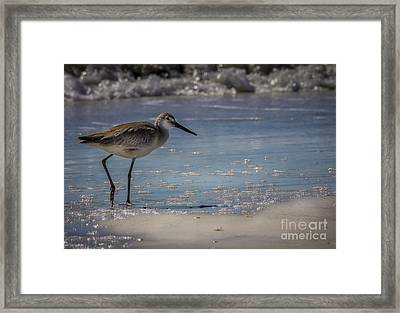 A Walk On The Beach Framed Print by Marvin Spates