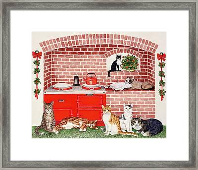 A Warm Place Framed Print by Pat Scott
