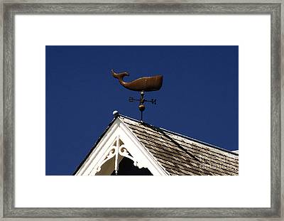 A Whale Of A House Framed Print by David Lee Thompson