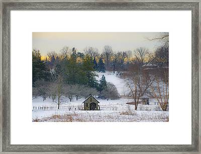 A Winters Day At Morris Arboretum Framed Print by Bill Cannon
