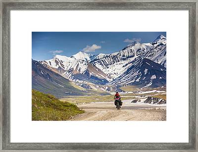 A Woman Bicycle Touring In Denali Framed Print by Michael Jones