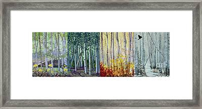 A Year In A Birch Forest Framed Print by Stanza Widen
