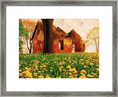 Abandoned Beauty Framed Print by Emily Allred