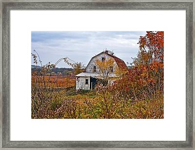Abandoned Framed Print by Marcia Colelli