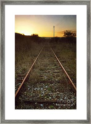 Abandoned Railway Framed Print by Carlos Caetano
