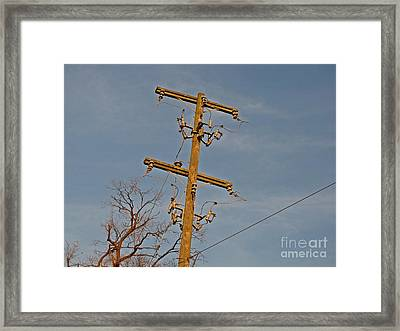 Abandoned Utility Pole At Lorton Reformatory Framed Print by Ben Schumin