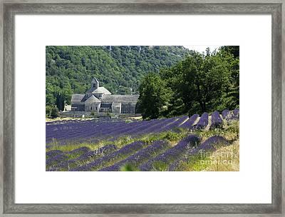 Abbaye Of Senanque. Luberon. Framed Print by Bernard Jaubert