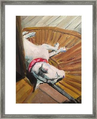 Abby In Sunshine Framed Print by Susan E Jones