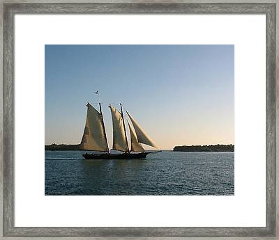 Abeam Of Kingfish Shoals Framed Print by Lin Grosvenor