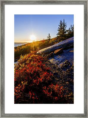 Above Bar Harbor Framed Print by Chad Dutson