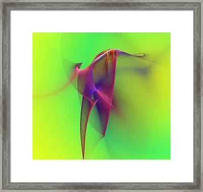 Abstract 091610 Framed Print by David Lane