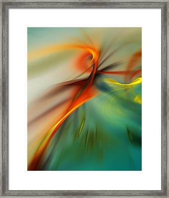 Abstract 110910b Framed Print by David Lane