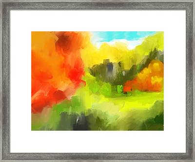Abstract 112210 Framed Print by David Lane