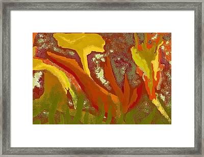 Abstract Cannas Framed Print by Carole Boyd