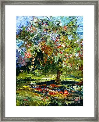 Abstract Cherry Tree  Framed Print by Ginette Callaway