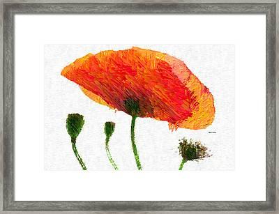 Abstract Flower 0723 Framed Print by Rafael Salazar