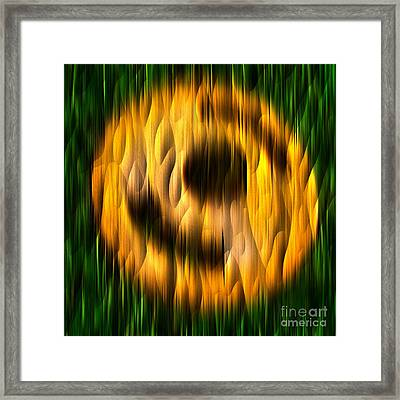 Ring Of Fire - Abstract Relief No. 16.0108-01 Framed Print by Jason Freedman