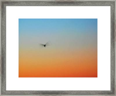 Abstract Skyscape Framed Print by Juergen Roth