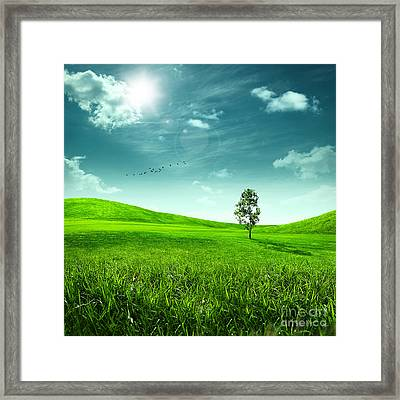 Abstract Toon Background For Your Design Framed Print by Unknow