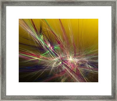 Abstracty 110310 Framed Print by David Lane
