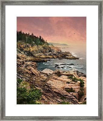 Acadia National Park Framed Print by Lori Deiter