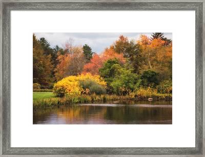 Across The Pond Framed Print by Tom Mc Nemar
