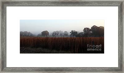 Across The Way Framed Print by Amanda Barcon