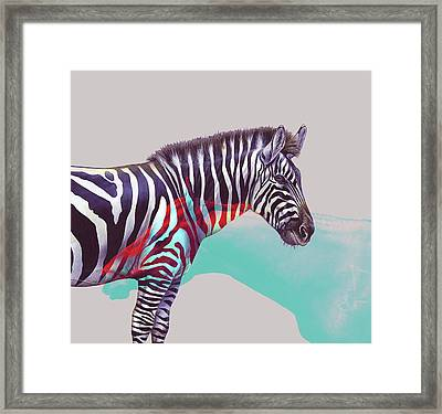 Adapt To The Unknown Framed Print by Uma Gokhale