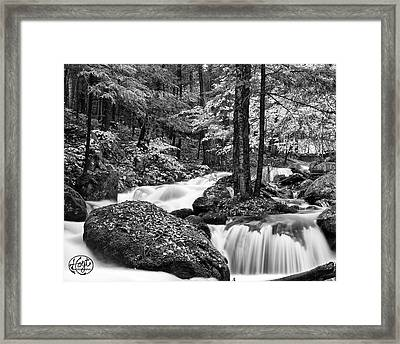 Adirondack Stream Framed Print by Brad Hoyt