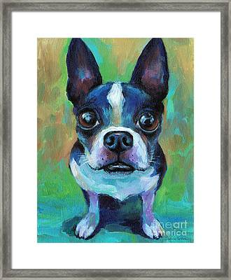 Adorable Boston Terrier Dog Framed Print by Svetlana Novikova