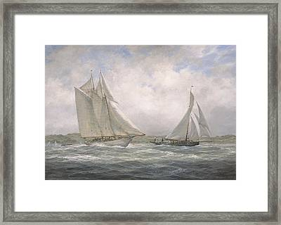 Aello Beta And Marigold Off The Isle Of Wight Framed Print by Richard Willis