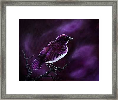 Affliction Framed Print by Danielle Trudeau