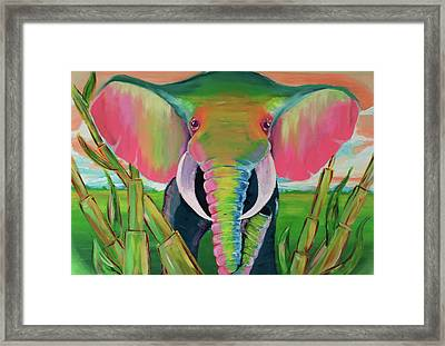 Africa Framed Print by Mark Ashkenazi