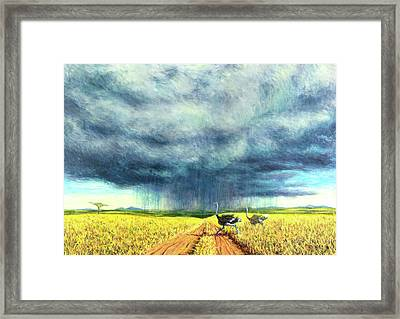 African Storm Framed Print by Tilly Willis